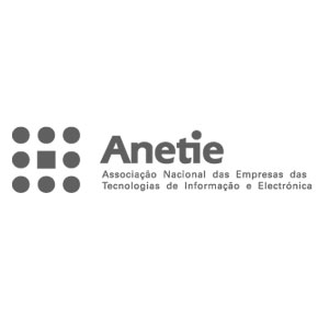 Bullet Solutions Partners ANETIE