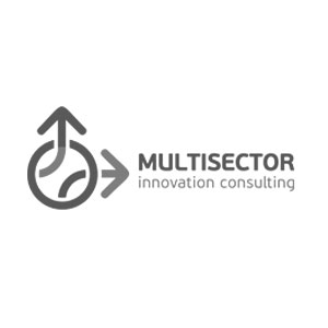 Bullet Solutions Partners Multisector